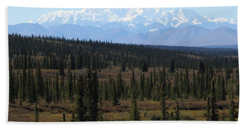 Denali Bath Towel featuring the photograph Denali From The Denali Highway by Steve Wolfe