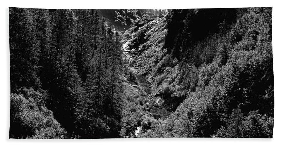 Alaska Hand Towel featuring the photograph Denali National Park 3 by Dick Goodman