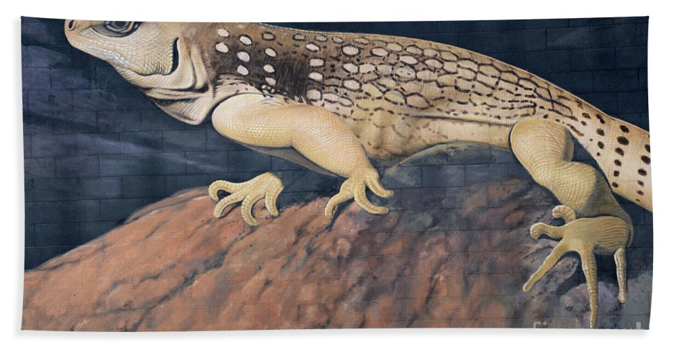 Mural Bath Sheet featuring the photograph Desert Iguana Mural by Bob Christopher