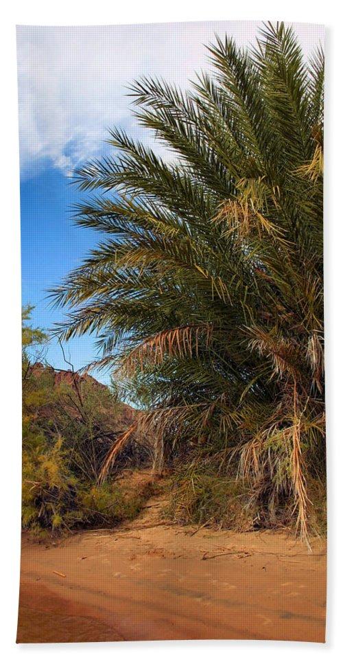 Desert Hand Towel featuring the photograph Desert Isle by Kristin Elmquist