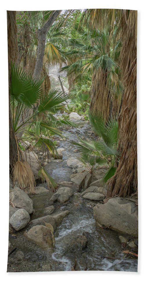 Frank Dimarco Hand Towel featuring the photograph Desert Palms Oasis by Frank DiMarco