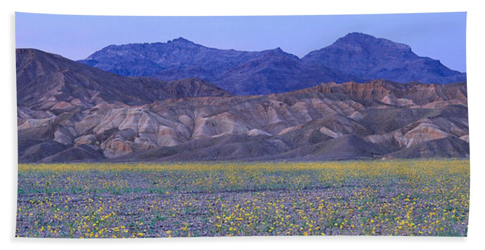 Photography Bath Sheet featuring the photograph Desert Wildflowers, Death Valley by Panoramic Images