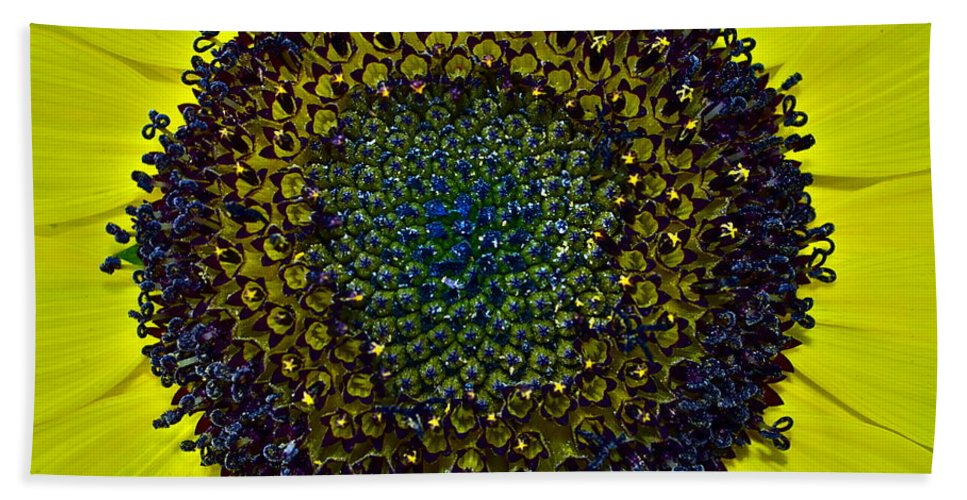 Sunflower Bath Sheet featuring the photograph Details by Gwyn Newcombe