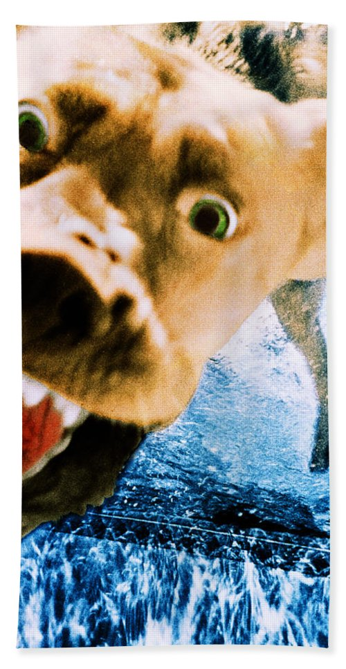 Dog Hand Towel featuring the photograph Devil Dog Underwater by Jill Reger