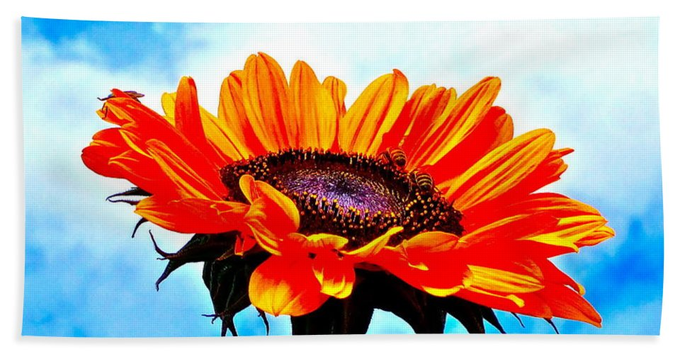 Photograph Of Sunflower With Blue Sky Bath Sheet featuring the photograph Devotion by Gwyn Newcombe