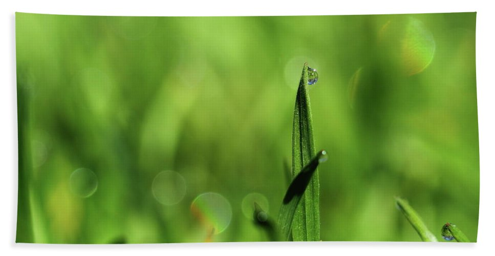 Photo Miracle Flowers Nature Dew On The Grass Bath Sheet featuring the photograph Dew On The Grass by Elena Horbatenko