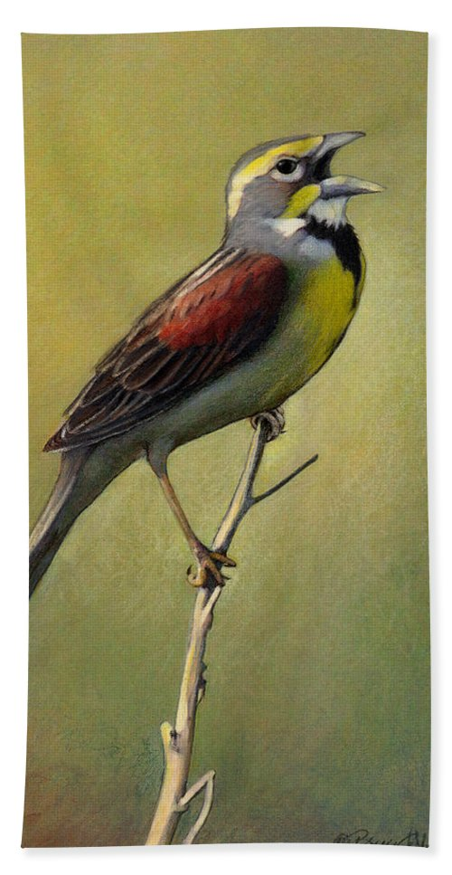 Birds Hand Towel featuring the drawing Dickcissel Summer Song by Bruce Morrison