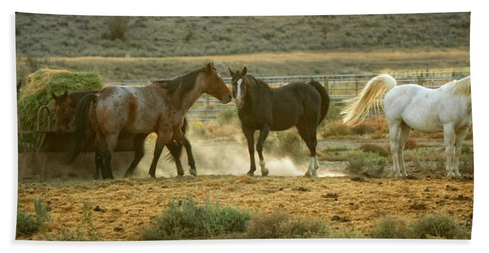 Horses Hand Towel featuring the photograph Dinner Time by Donna Blackhall