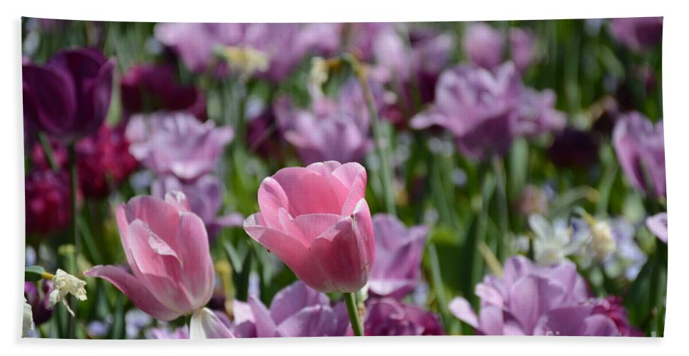 Hand Towel featuring the painting Divine Tulip Display by Constance Woods