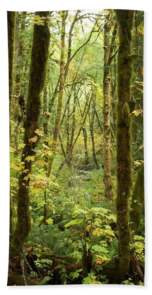 Woods Bath Sheet featuring the photograph Dixie by Sara Stevenson