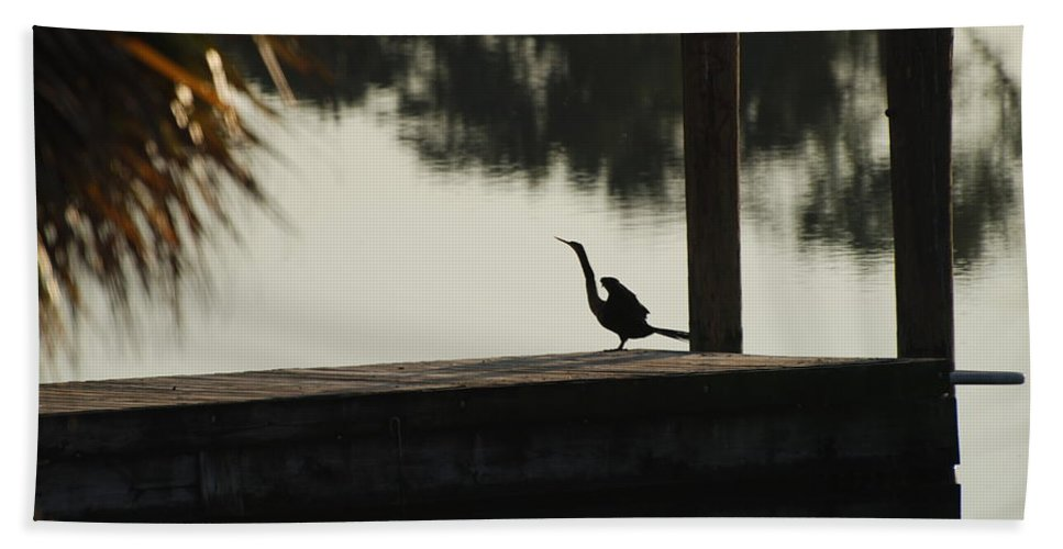 Reflections Hand Towel featuring the photograph Dock Bird In Color by Rob Hans