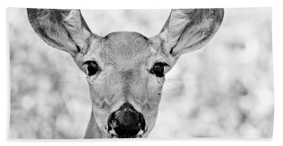Deer Hand Towel featuring the photograph Doe Eyes - Bw by Lana Trussell