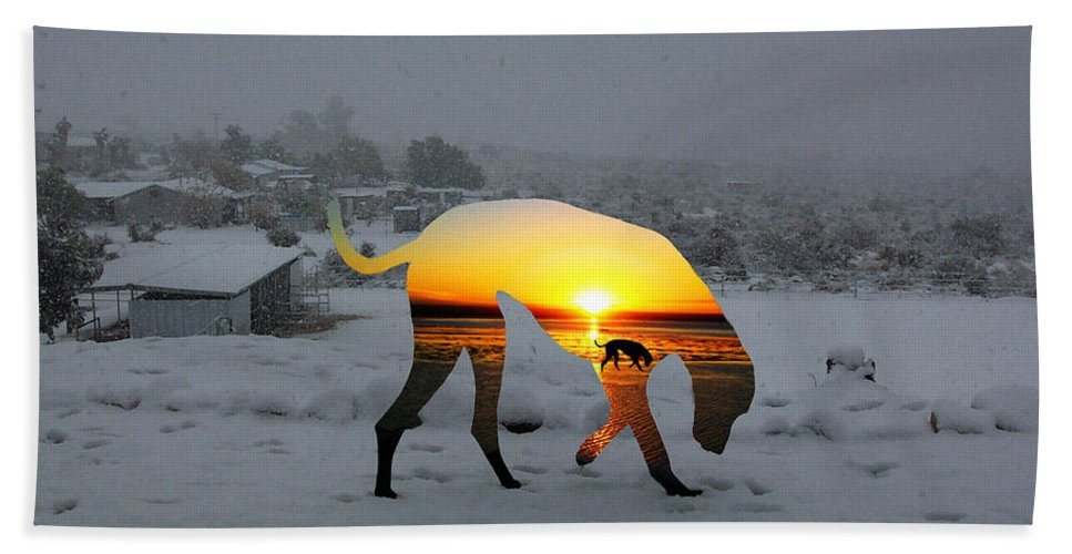 Landscape Hand Towel featuring the photograph Dog Day Afternoon by Snake Jagger