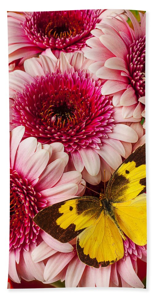 Dog Face Butterfly Butterflies Bath Towel featuring the photograph Dog Face Butterfly On Pink Mums by Garry Gay