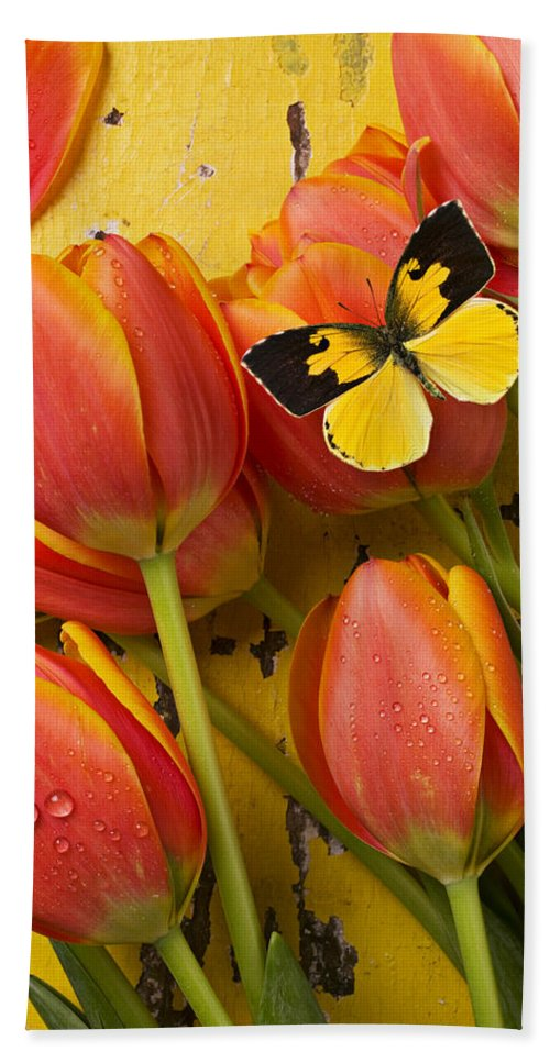 Butterfly Hand Towel featuring the photograph Dogface Butterfly And Tulips by Garry Gay