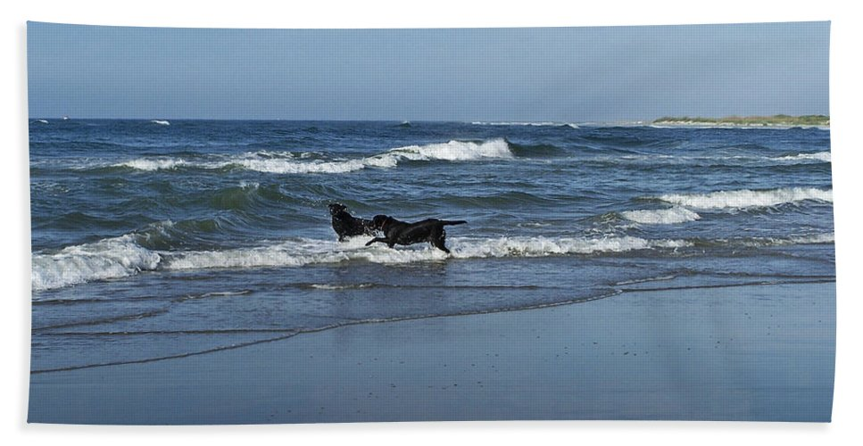 Dog Hand Towel featuring the photograph Dogs In The Surf by Teresa Mucha