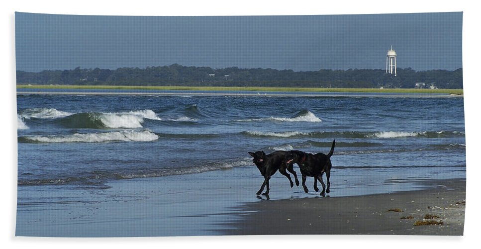 Dog Hand Towel featuring the photograph Dogs On The Beach by Teresa Mucha