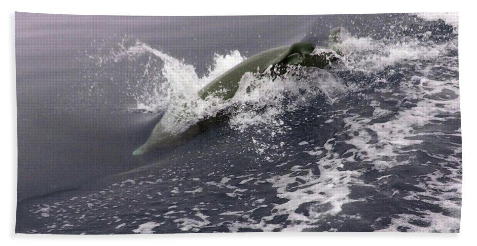 Fish Bath Sheet featuring the photograph Runnin' Dolphin by Dick Hopkins
