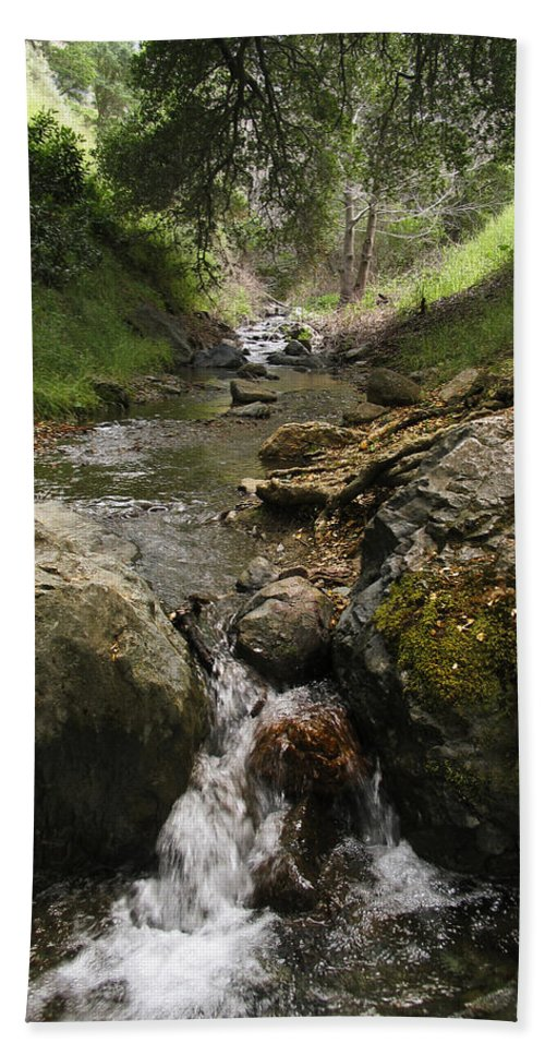 Mt. Diablo Bath Towel featuring the photograph Donner Creek by Karen W Meyer