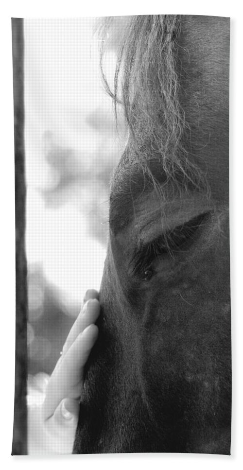 Horse Bath Sheet featuring the photograph Don't Be Afraid by Donna Blackhall