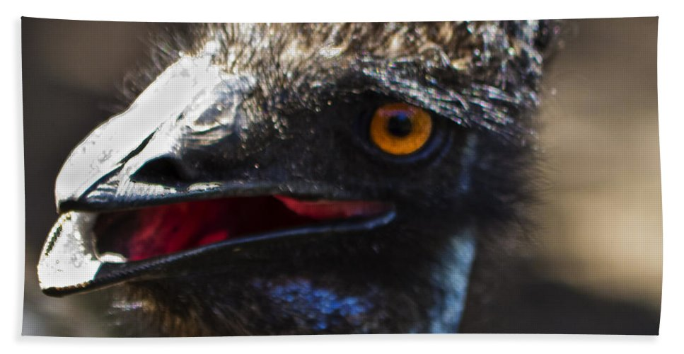 Emu Hand Towel featuring the photograph Dont Mess With The Emu by Roger Wedegis