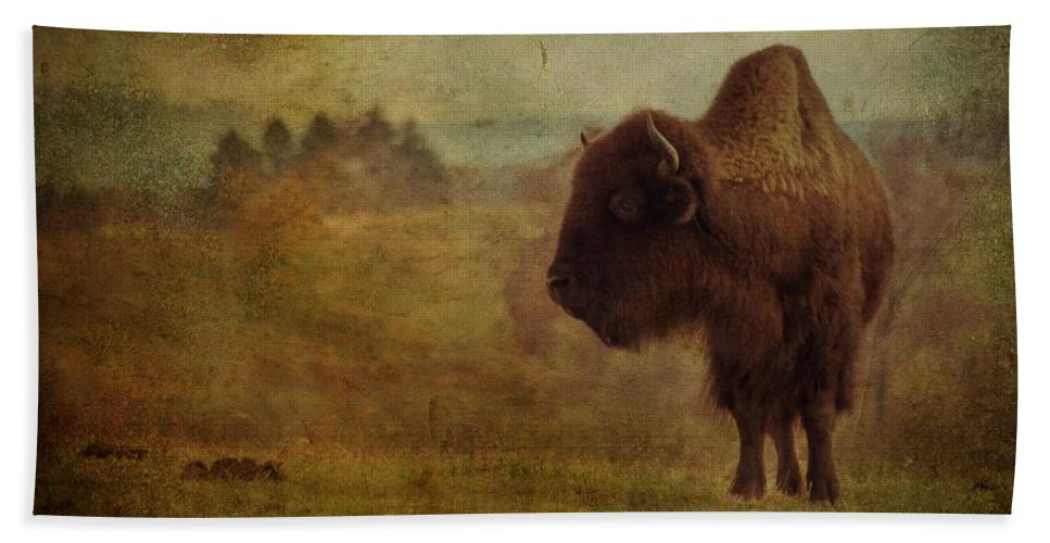 Bison Bath Sheet featuring the photograph Doo Doo Valley by Trish Tritz