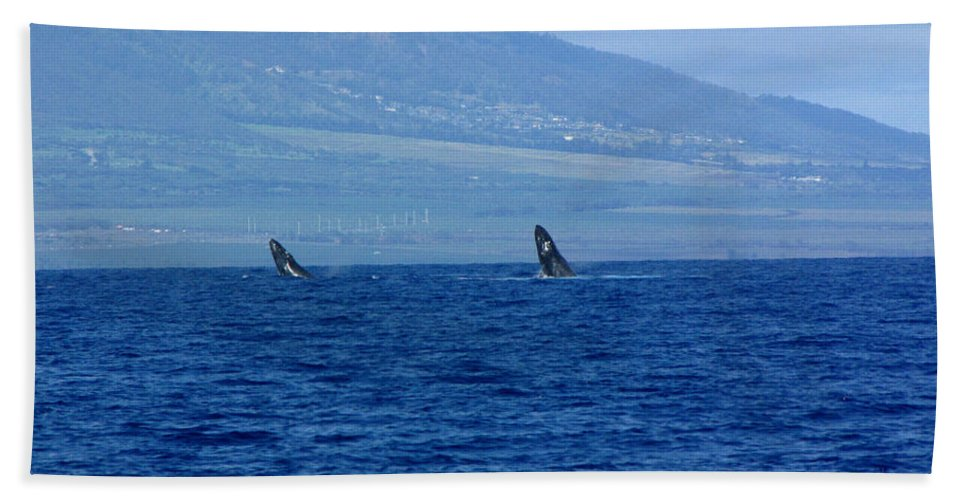 Whale Hand Towel featuring the photograph Double Breach by Sarah Houser