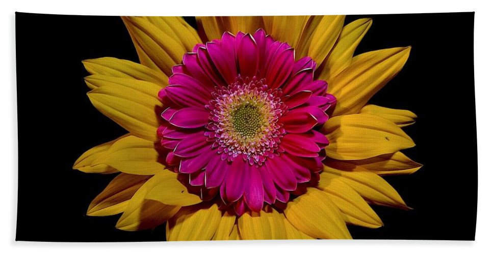 Sunflower Bath Sheet featuring the photograph Double Delight by Nanci Rozal