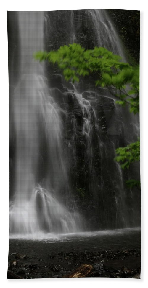 Waterfall Bath Sheet featuring the photograph Double Falls by Laddie Halupa
