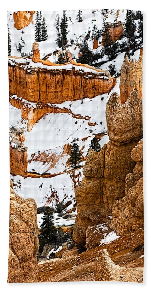 Bryce Canyon Hand Towel featuring the photograph Down Into The Canyon by Christopher Holmes