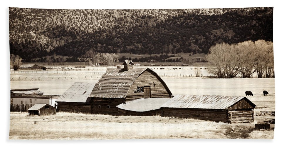 Americana Hand Towel featuring the photograph Down On The Farm by Marilyn Hunt