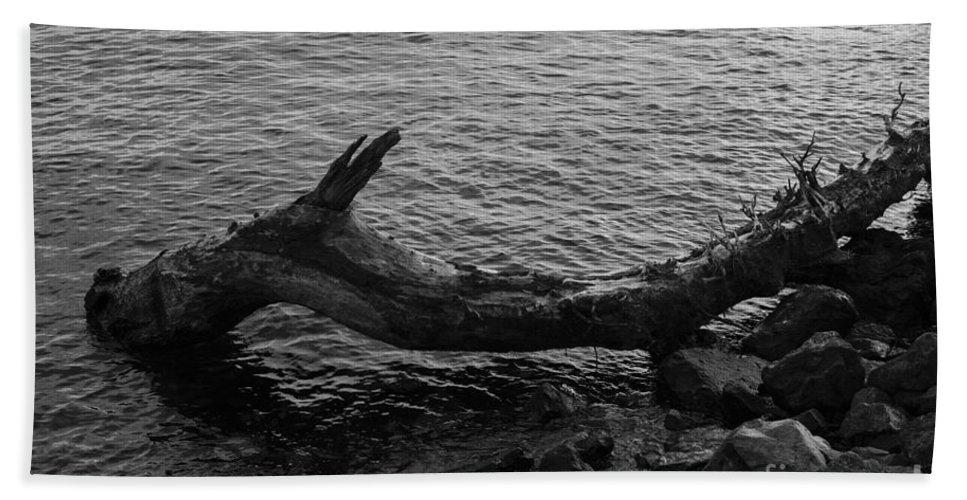 Elliott Bay Bath Sheet featuring the photograph Dragon Taking A Drink by Jim Corwin