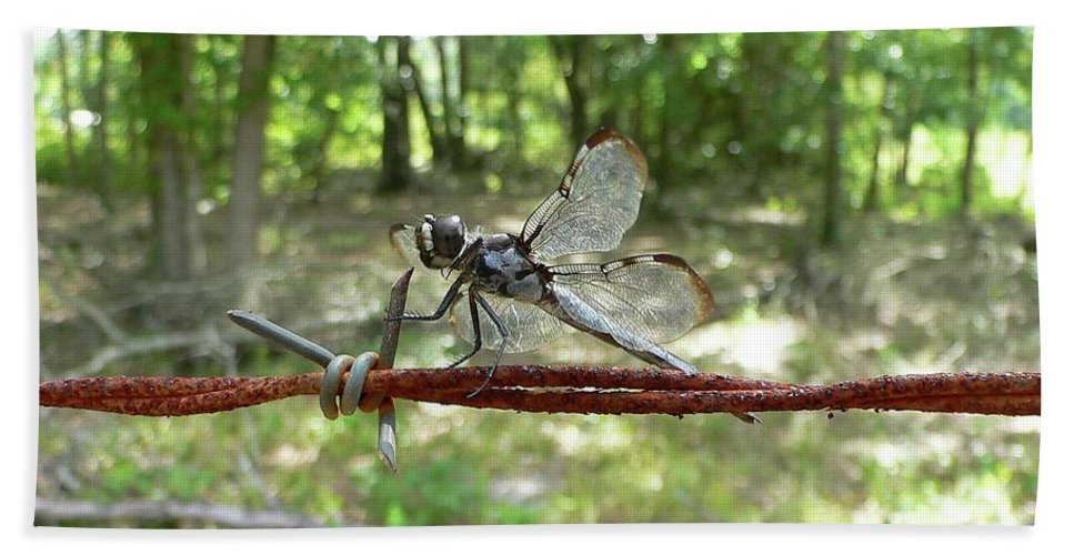 Dragonfly Hand Towel featuring the photograph Dragonfly On Barbed Wire by Al Powell Photography USA