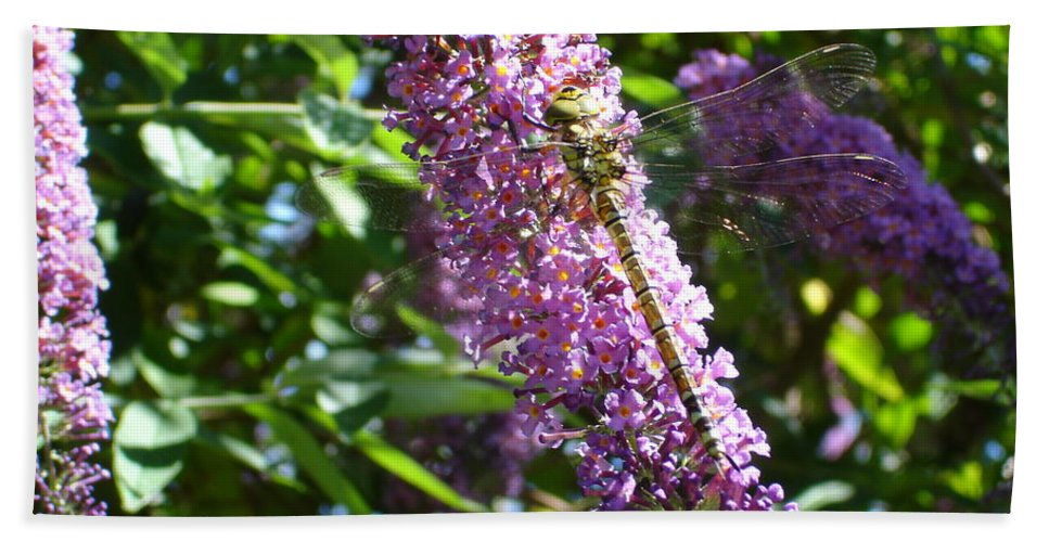 Dragonfly Bath Sheet featuring the photograph Dragonfly On The Butterfly Bush by Susan Baker