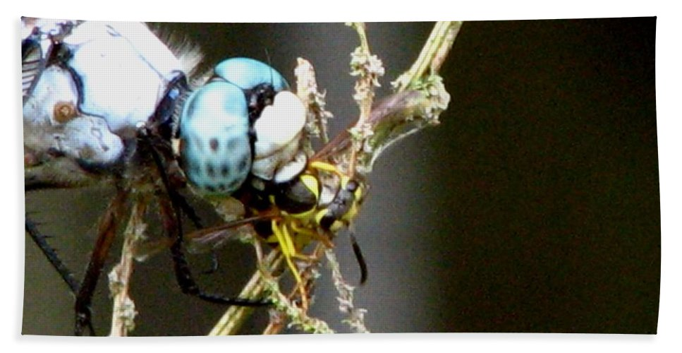 Dragonfly Hand Towel featuring the photograph Dragonfly With Yellowjacket 2 by J M Farris Photography