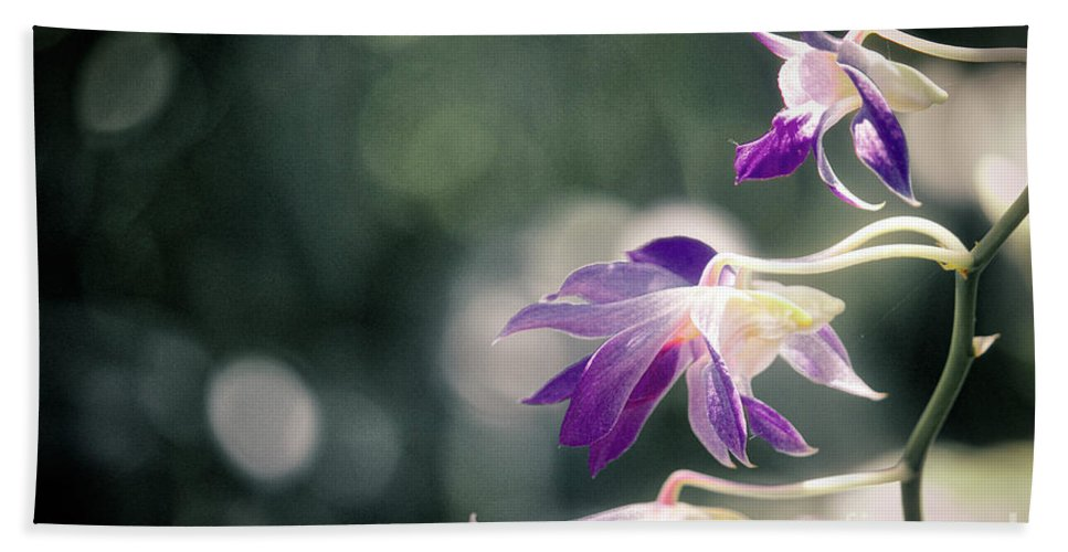 Orchid Bath Sheet featuring the photograph Dragons In The Orchids by Karin Everhart