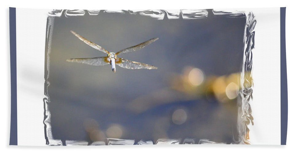 Greeting Cards Hand Towel featuring the photograph Dreams Take Flight Poster Or Card by Carol Groenen