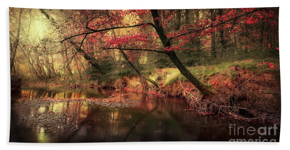 Svetlana Sewell Hand Towel featuring the photograph Dreamy Autumn Forest by Svetlana Sewell