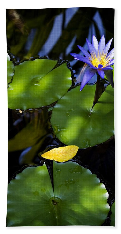 Lotus Hand Towel featuring the photograph Dreamy Lotus by Marilyn Hunt