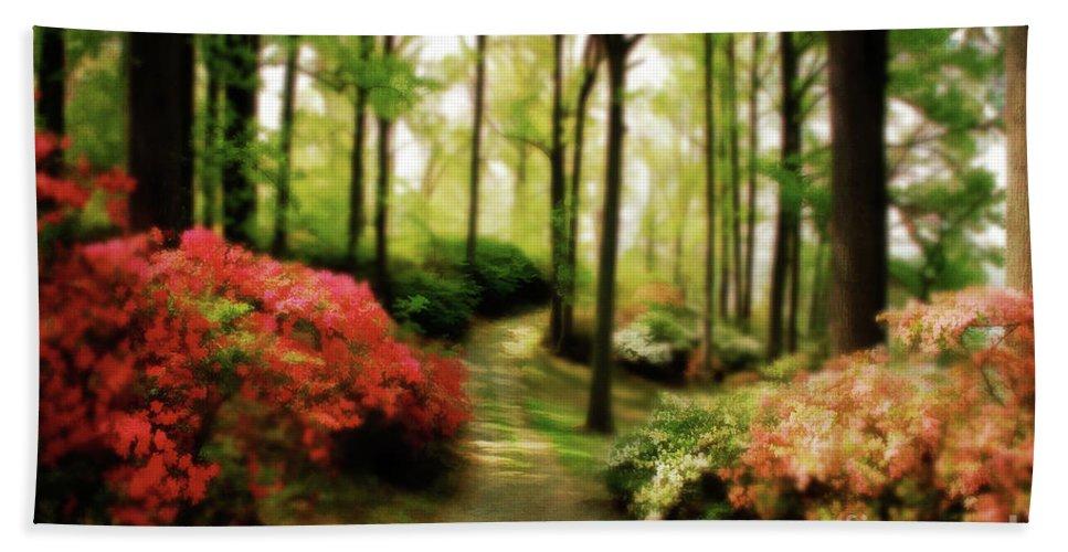 Landscape Bath Towel featuring the photograph Dreamy Path by Lois Bryan