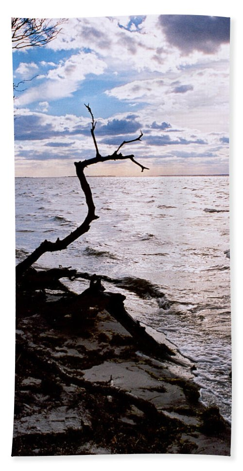 Barnegat Hand Towel featuring the photograph Driftwood Dragon-barnegat Bay by Steve Karol