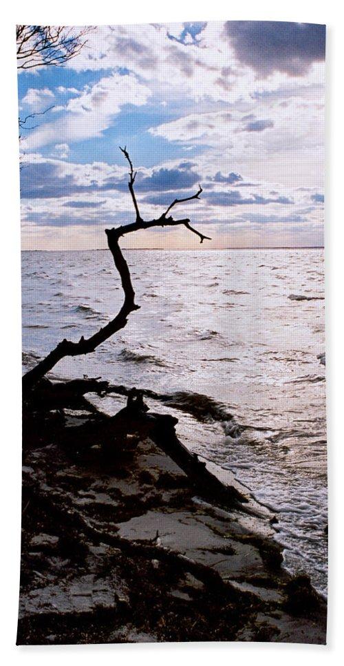 Barnegat Bath Towel featuring the photograph Driftwood Dragon-Barnegat Bay by Steve Karol