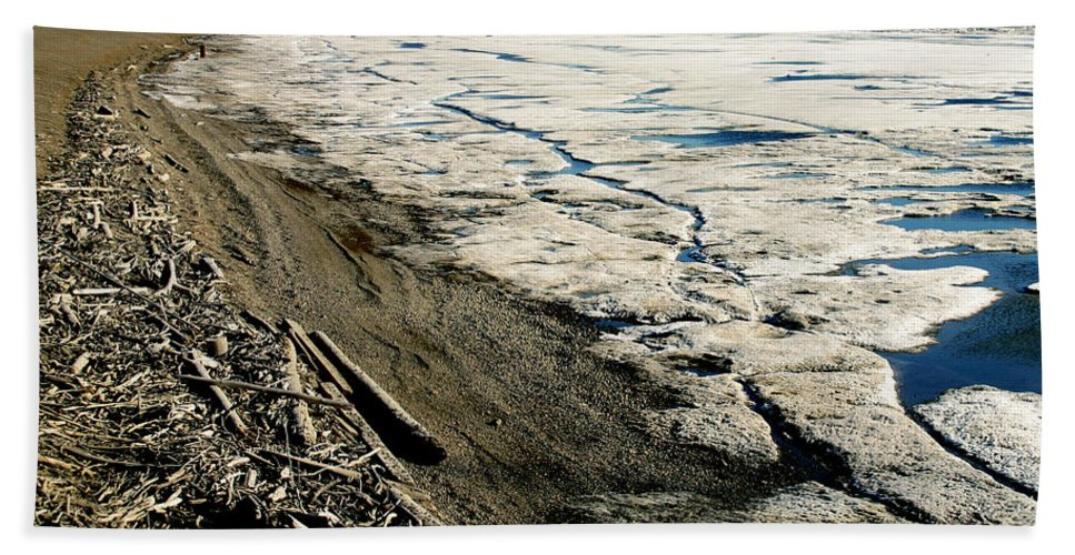 Drift Wood Bath Sheet featuring the photograph Driftwood On The Frozen Arctic Coast by Anthony Jones