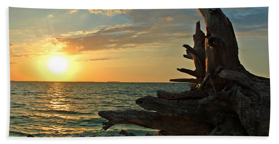 Sunset Hand Towel featuring the photograph Driftwood Sunset by Susanne Van Hulst