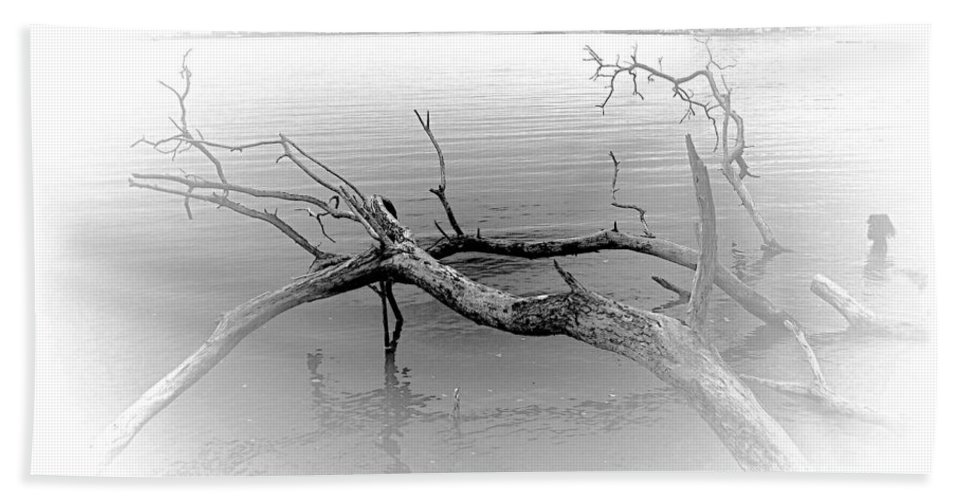 2d Bath Sheet featuring the photograph Driftwood Vignette - Grayscale by Brian Wallace