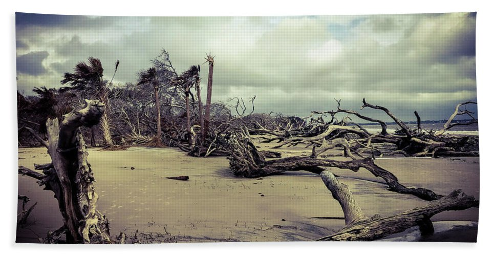 Ocean Landscape Hand Towel featuring the photograph Driftwoods by Adam Rogers
