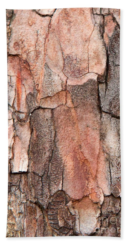 Tree Bark Hand Towel featuring the photograph Dripping by Marilyn Cornwell
