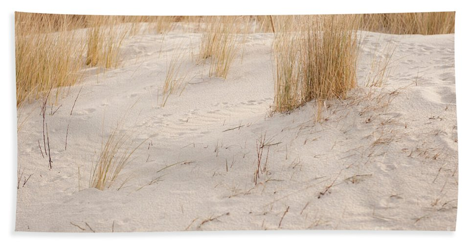 Dune Hand Towel featuring the photograph Dry Dune Grass Plants by Arletta Cwalina