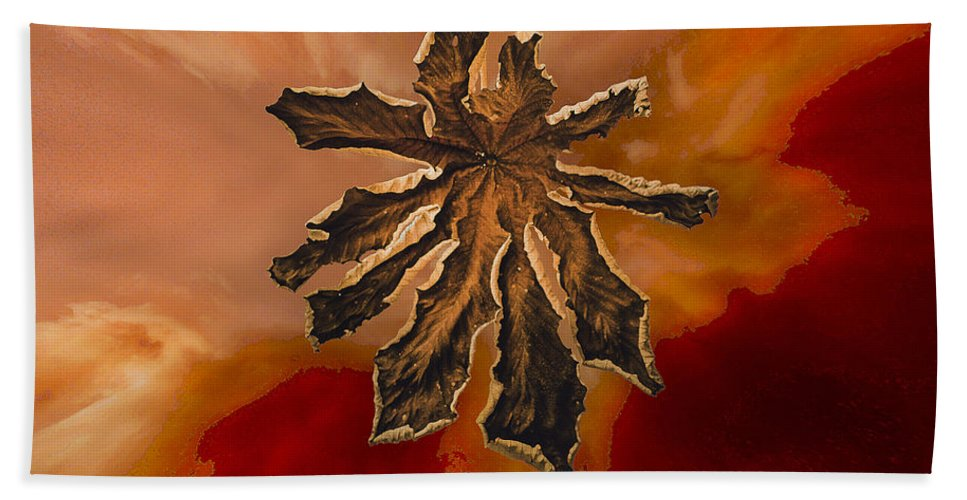 Dry Hand Towel featuring the photograph Dry Leaf Collection Digital 1 by Totto Ponce
