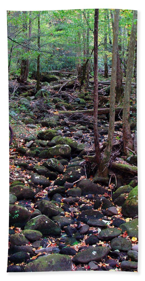 River Hand Towel featuring the photograph Dry River Bed- Autumn by Nancy Mueller